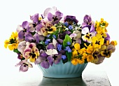 Spring posy of violas, buttercups & forget-me-nots