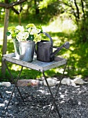 Zinc watering can and bucket containing flowers