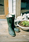 Wellington boots next to planted dish