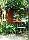 Table and chairs in front of garden shed covered in climbers