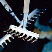 Detail of garden tools
