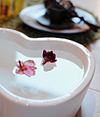 Violet flowers floating in bowl filled with water