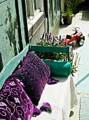 Kissen mit violettem Samtbezug auf sonnenbeschienene Holzbank