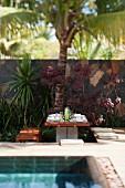 Garten mit gedecktem Holztisch unter Palmen neben dem Swimmingpool
