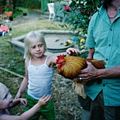 Farmer showing children a rooster