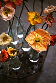 Flowers in small bottles