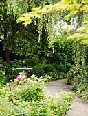 Gravel path leading through flourishing garden
