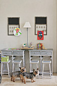 Small dogs in child's bedroom with rustic desks and stools