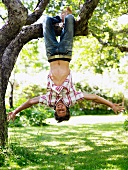 Young boy hanging from a tree