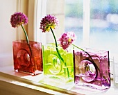 Violet flowers in vases made of colored glass