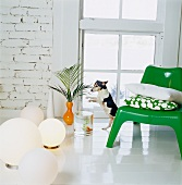 Dog between floor lamps and a green retro plastic chair with cushions