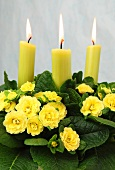 Spring decor: yellow primulas and candles