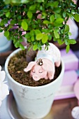 Felt piggy figurine in flowerpot