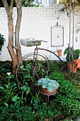 Old wire bistro chair and antique iron bicycle as flower bed decorations