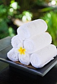 Towels at the Hotel and Ayurveda Spa Shanti Maurice (Mauritius)