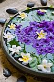 Wasserschale mit Blüten (Hotel und Ayurveda Spa Shanti Maurice)