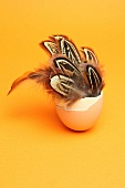 Birds' feathers in an eggshell as Easter decoration