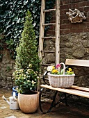 Planters and retro garden bench against stone wall in courtyard