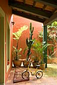 Bike in bike rack below porch and exotic plants in pots