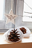 White Christmas star and pine cones