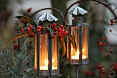 Lanterns with red berries and rosehips