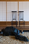 Boulders on gravel floor and pair of chairs on platform in front of Japanese wall