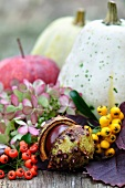 Autumn arrangement with squashes, an apple, a conker, berries and hydrangeas