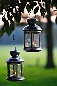 Lanterns hanging from tree in garden