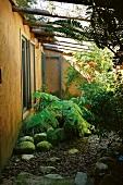 Steingarten mit Farnen vor Hausfassade mit offenen, nach aussen aufschlagenden Fenstern