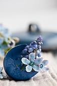 Blau gefärbte Eierschale gefüllt mit Traubenhyzinthe und Blaustern