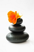Three stacked black stones with nasturtium flower