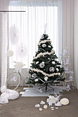 Decorated Christmas tree and bicycle as Christmas gift below window with floor-length curtain