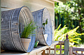 Pots of herbs in zinc containers on outdoor wall-mounted shelf