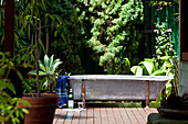 Vintage bathtub on decking of sunny terrace in front of exotic garden