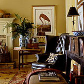 Dark brown leather armchair in corner of traditional living room