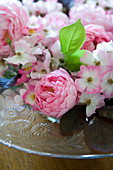 Pink roses (English roses) on glass dish with floral pattern