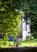 Vintage tricycle in garden with wooden shed