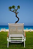 Lounger by the sea