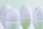 White eggs in egg cups
