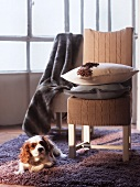 Chairs with knitted covers and fur throw
