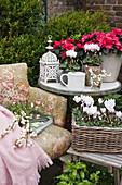 Alter Sessel mit Büchern und Schneeberen, Hocker und Beistelltisch mit Alpenveilchen und Azaleen in der Ecke der Terrasse
