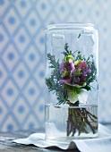 Kleiner Strauss aus Christrosen in einem Glas