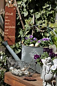 Zinc watering can, elf figurine, basket of quails' eggs and violas on a garden table