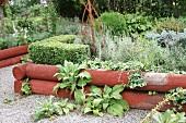 Herb garden in wooden raised beds