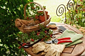 Gardening utensils on garden table