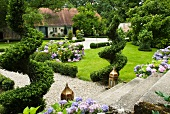 Flowering hydrangeas and topiary box spirals in split-level summer garden