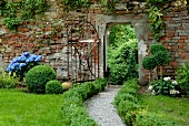 Weathered castle wall with iron gate and flowering hydrangea