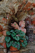 Angel statue and foliage plant in niche of brick wall