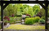 Pond in Japanese spring garden
