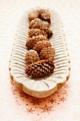 Pine cones in a wooden bowl